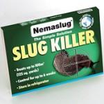 Nemotodes kill slugs