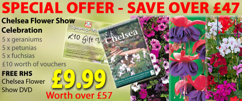 Chelsea bundle - dvd and plants