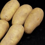 grow your own spuds