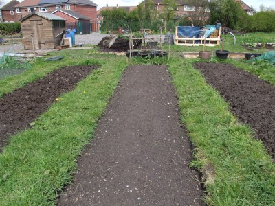 What is an allotment
