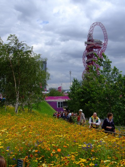 Flowers at olympics