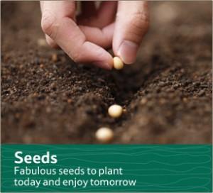 Garden_Seeds_306x278
