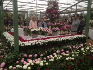 Marks and Spencers at the Chelsea Flower Show