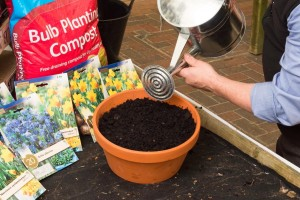 Spring planter - time to plant up